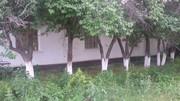 Продам дом в с. Гродиково ул.Мира